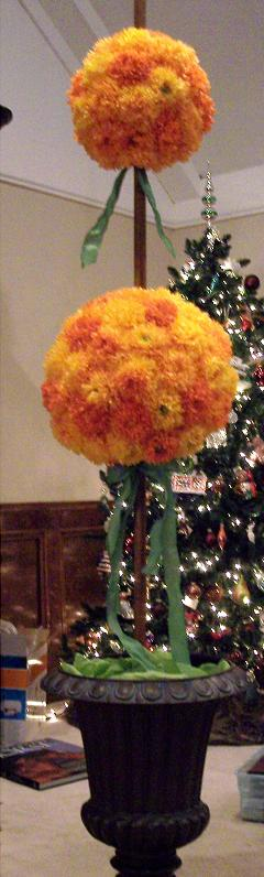 orange flower topiary