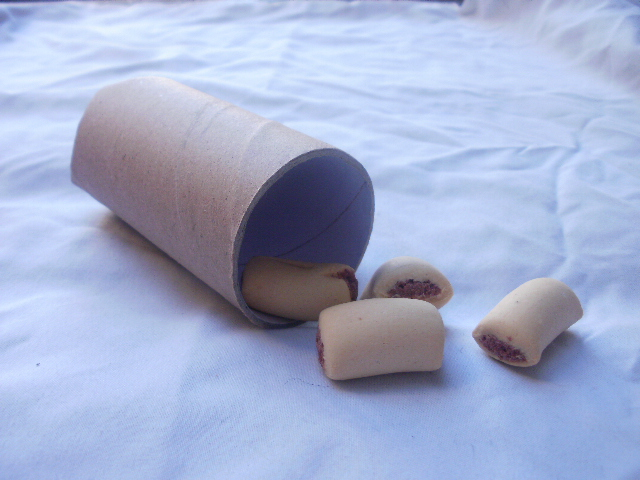 Paper Towel Tube Dog Treat Puzzle Toys